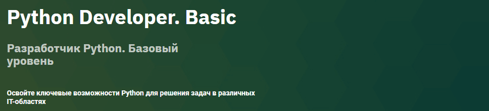 Разработчик Python Базовый уровень