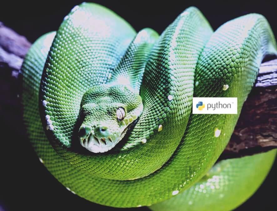 язык программирования python обучение с нуля онлайн бесплатно